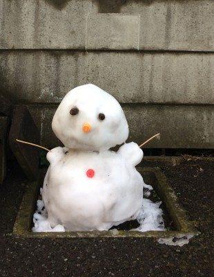 東京初積雪
